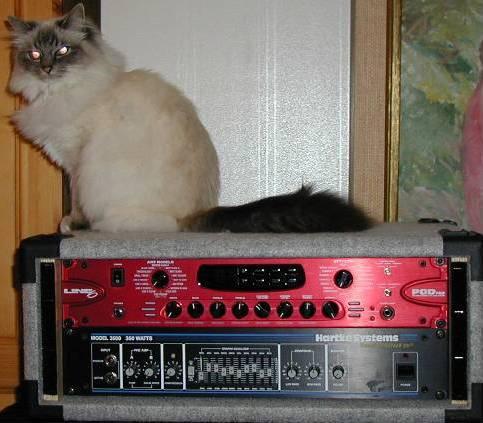 Vi ll spela ljud från datorn in i cubase